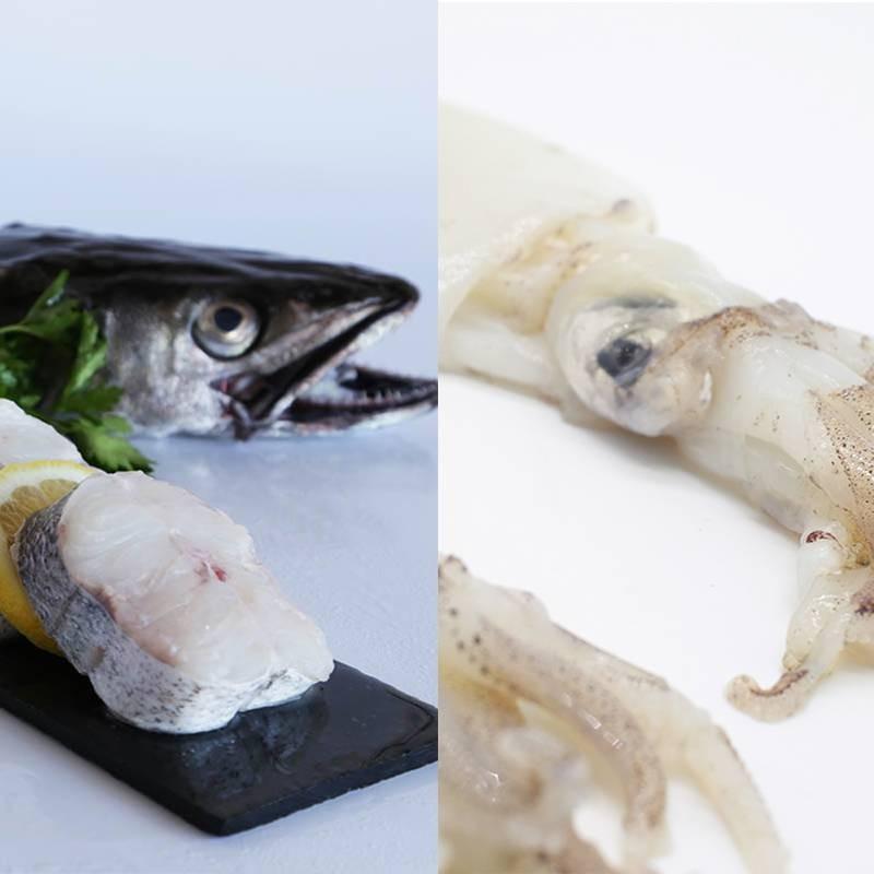 Lote de Pescado: Merluza y Calamar