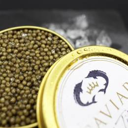 Caviar del Tibet Oscietra 250 gr