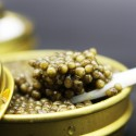Caviar del Tibet Oscietra 100 gr