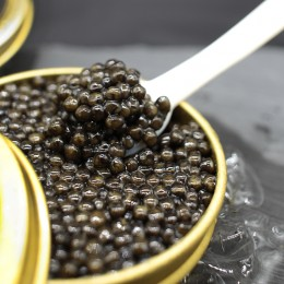 Caviar del Tibet Siberian 100 gr